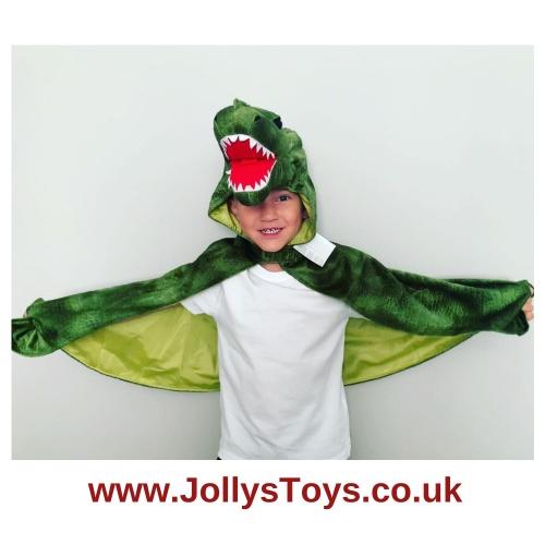 Dinosaur Dressing Up Cape