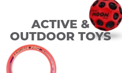 Active & Outdoor Toys
